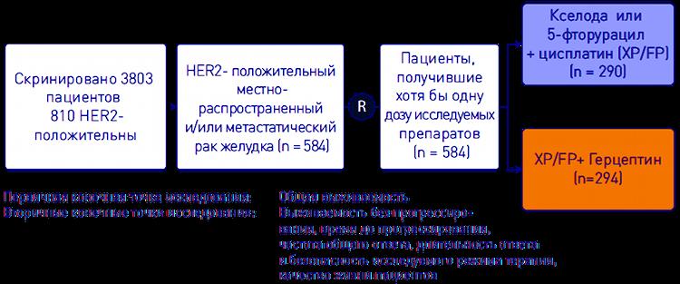 Дизайн исследования ToGA