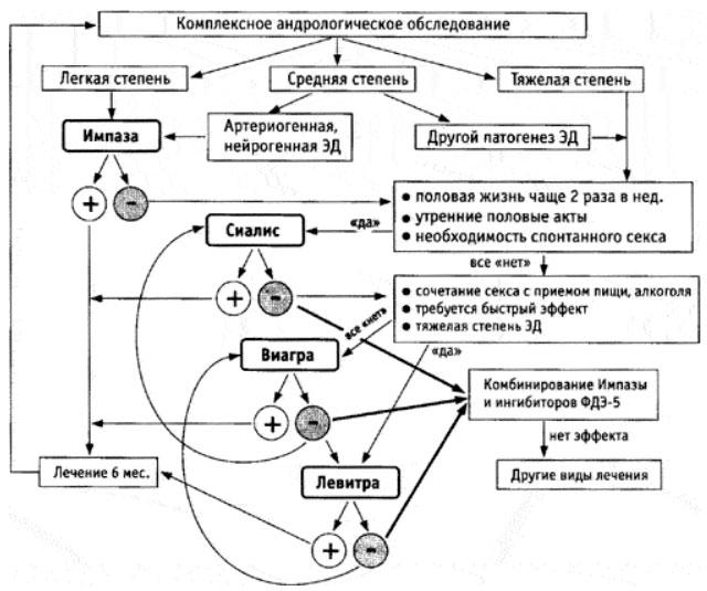 диагностика эректильной дисфункции клиническое руководство