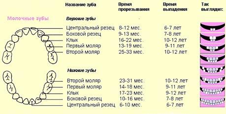 Блинчики с мясом 31 рецепт с фото пошагово. Как